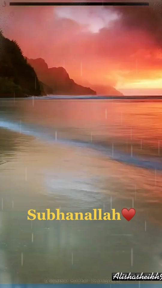sheikhalisha999